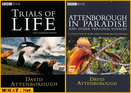 http://img.migat.net/multimedia/documentaries/bbc-wildlife-collection/PostBit2.jpg