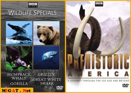 http://img.migat.net/multimedia/documentaries/bbc-wildlife-collection/PostBit5.jpg