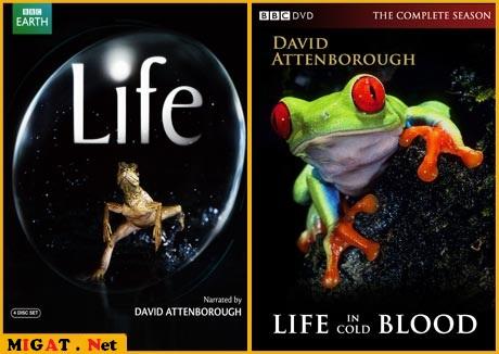 http://img.migat.net/multimedia/documentaries/bbc-wildlife-collection/PostBit7.jpg