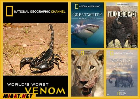 http://img.migat.net/multimedia/documentaries/national-geographic/3/PostBit-02.jpg